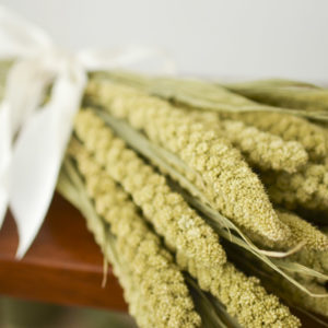 Dried limelight millet