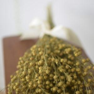Dried natural flax