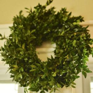 "10-12"" fresh boxwood wreath"