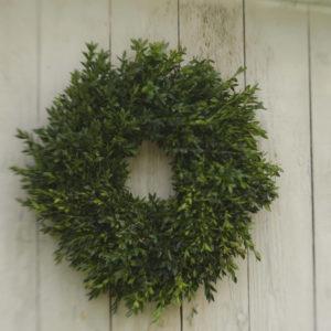 "24-26"" fresh boxwood wreath"